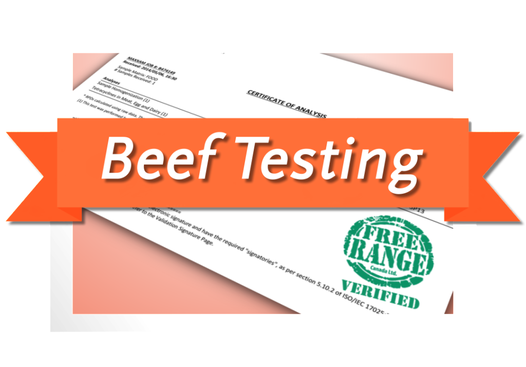 Beef-Testing
